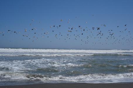 Playas de Mejía