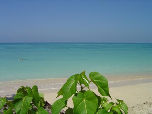 Playa Shanshy
