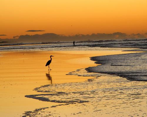 El Cuco, la mejor playa de El Salvador Playas en el mundo