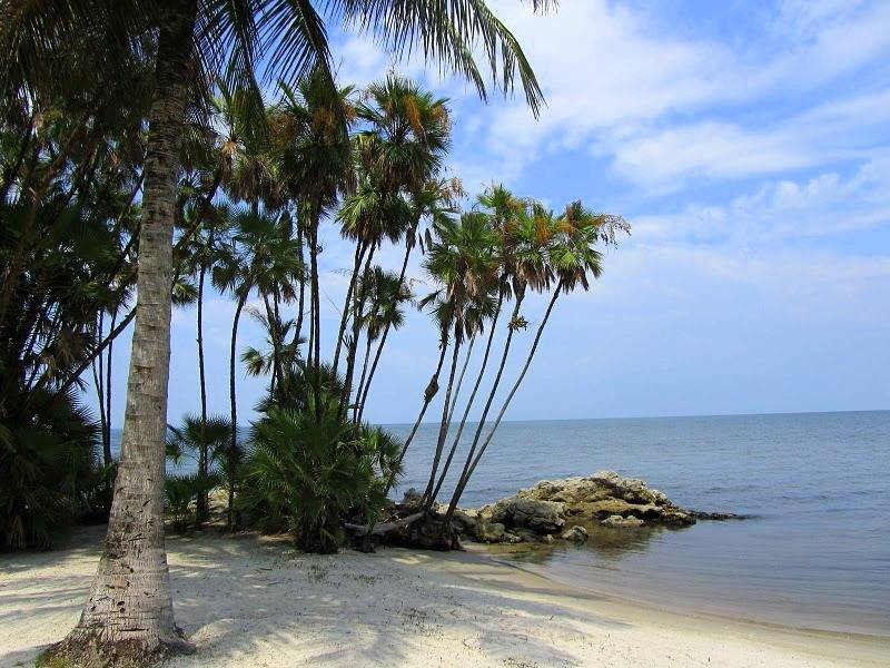 Playa Turneffe, hechizante playa de Belice Playas del mundo