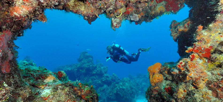 Cozumel una exótica isla caribeña Playas del mundo