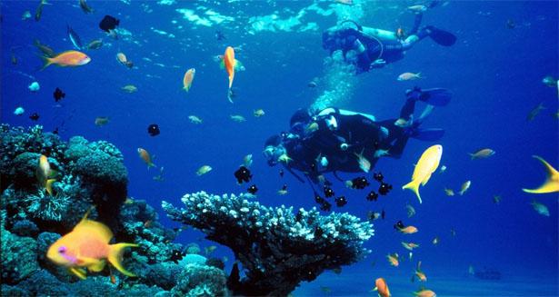 En el azul profundo y más allá Playas del mundo