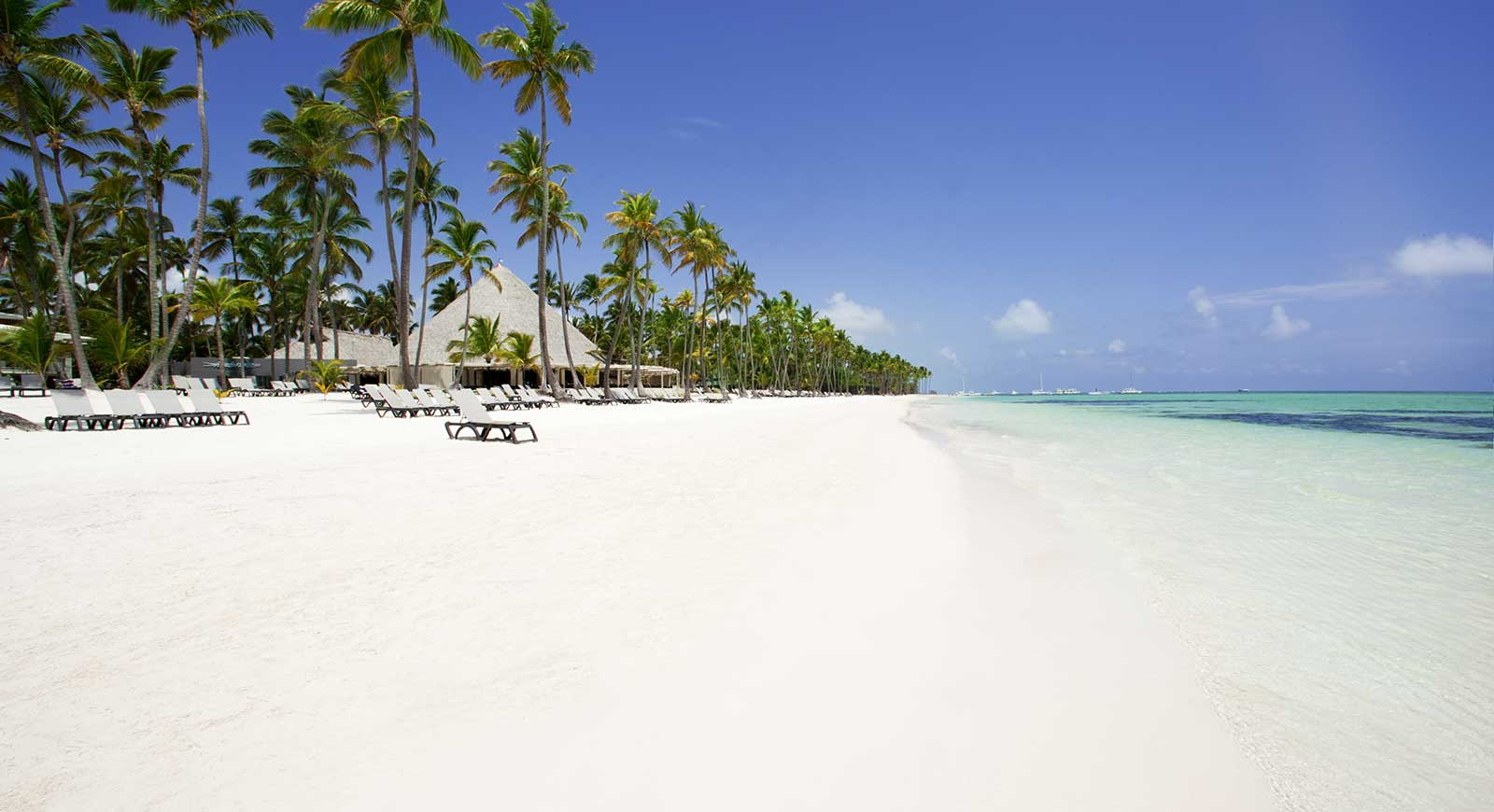 Los atractivos turísticos de Playa Bávaro en Punta Cana