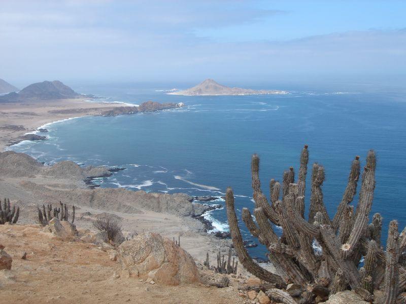 Playa Caleta Pan de Azúcar