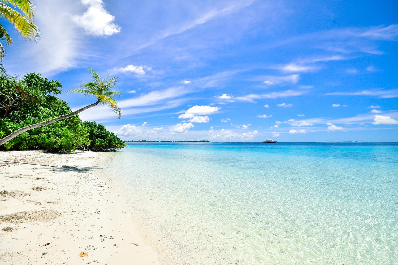 Playas imperdibles para vacacionar en Cancún Playas del mundo